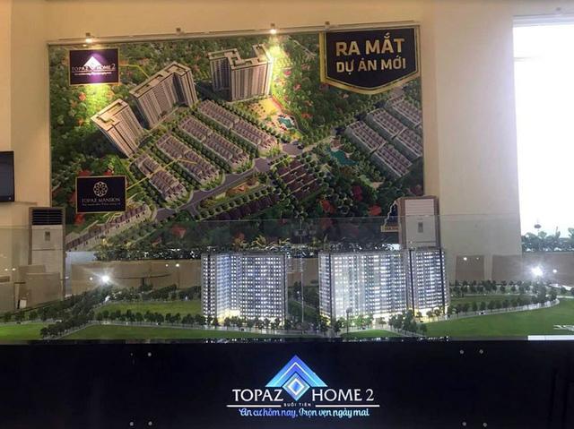 Topaz Home 2